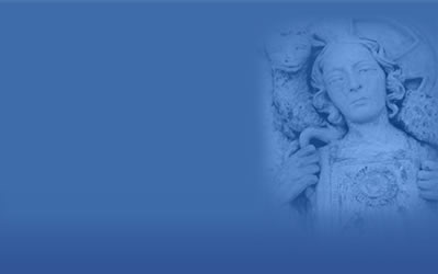 Perth Archdiocese – Daily Mass Online